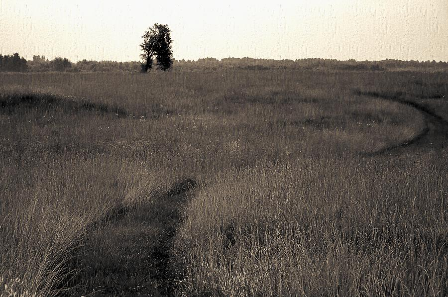 Agriculture Photograph - Field Ways by Yevgeni Kacnelson