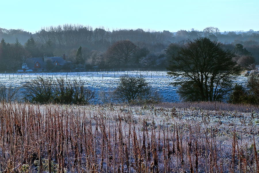Lanscape Photograph - Fields Of Frost by Karen Grist