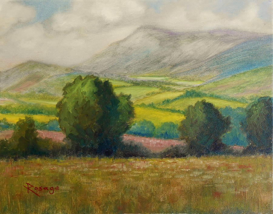 Tipperary Painting - Fields Of Tipperary   Ireland by Bernie Rosage Jr
