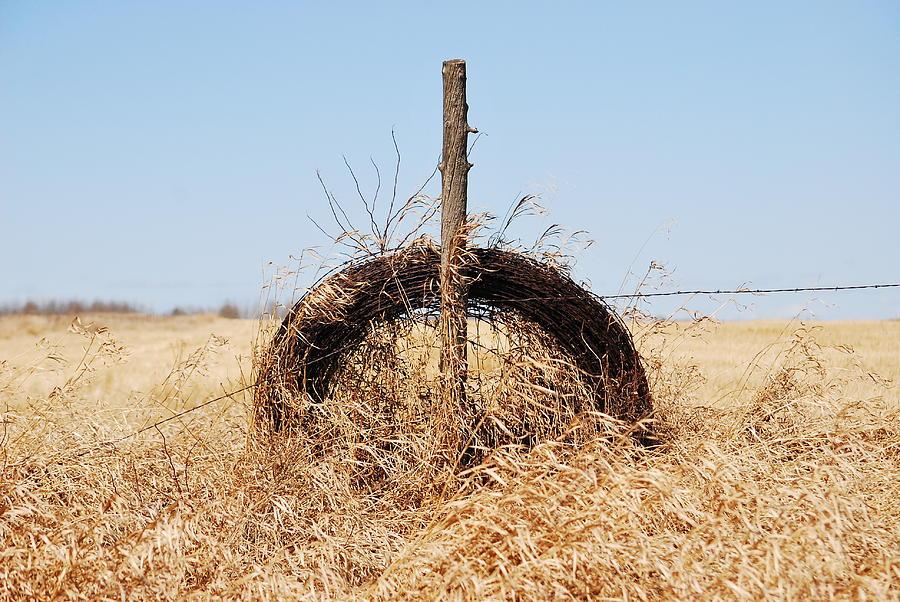 Farm Fields Photograph - fields That Feed by Jerry Cordeiro
