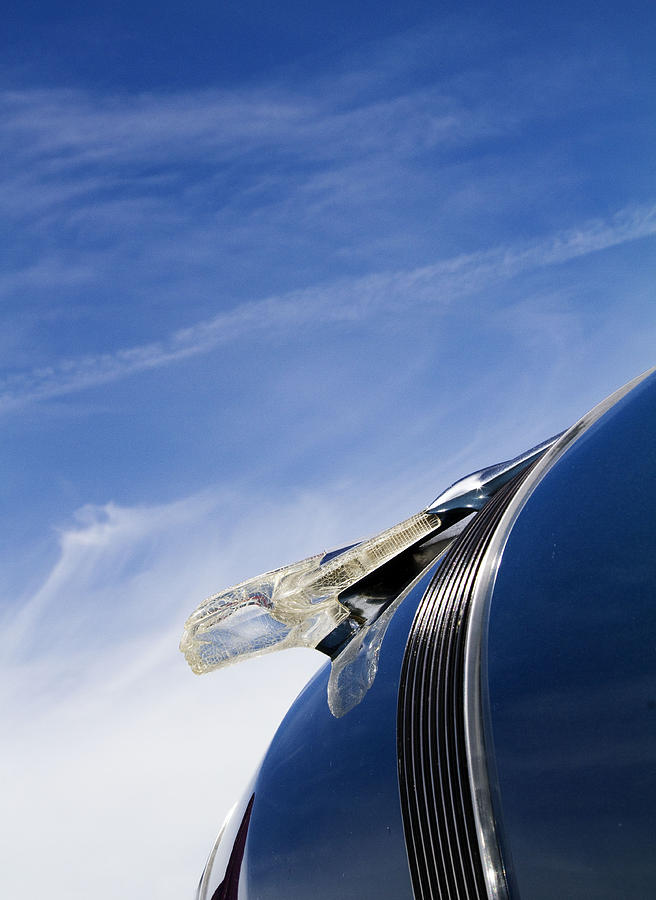 Hood Ornament Photograph - Fierce Chief by Rebecca Cozart