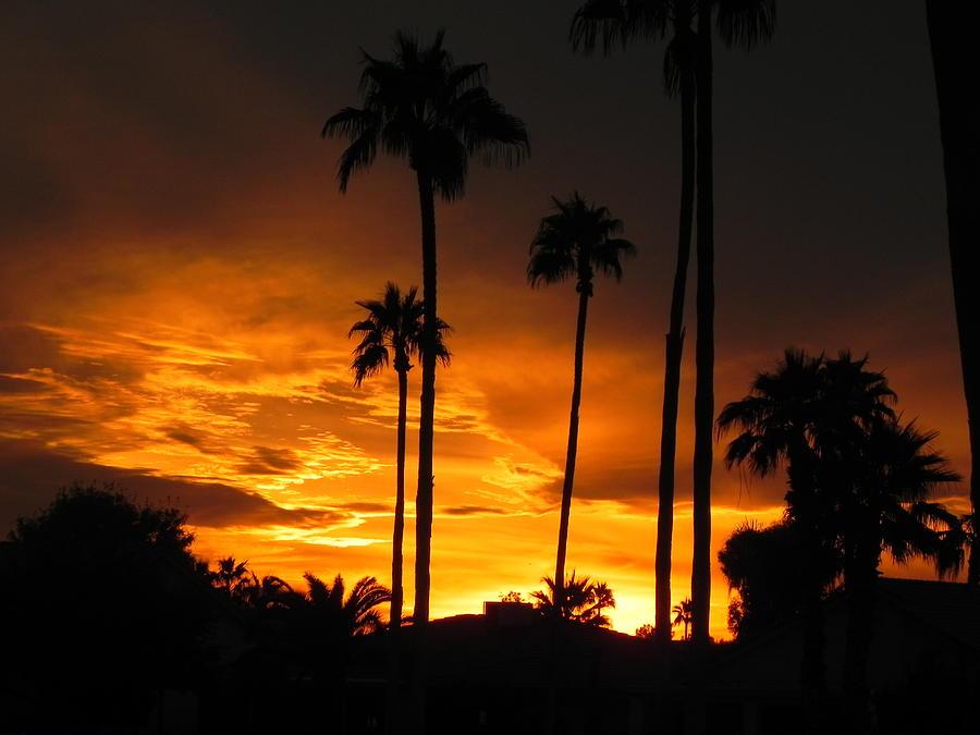 Sunset Photograph - Fiery Sunset by Deb Halloran