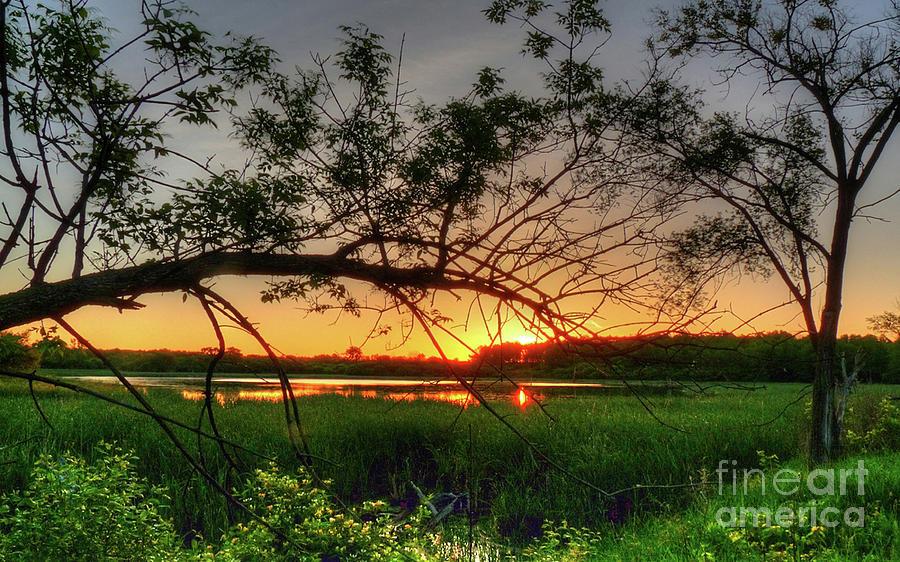 Sunset Photograph - Fiery Swamp Sunset by Deborah Smolinske
