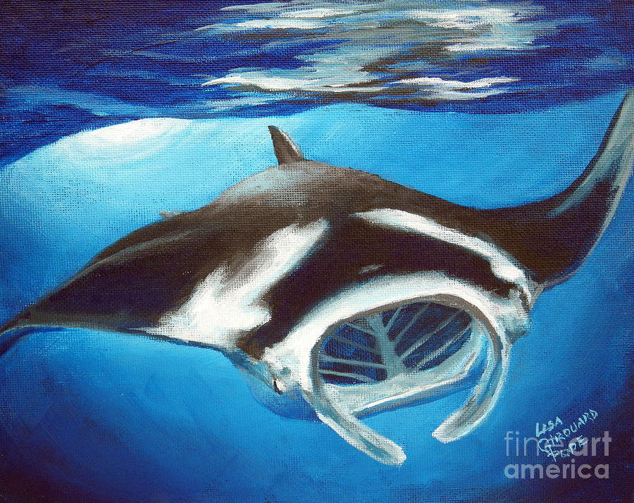 Manta Ray Painting - Filtering For Food by Lisa Pope