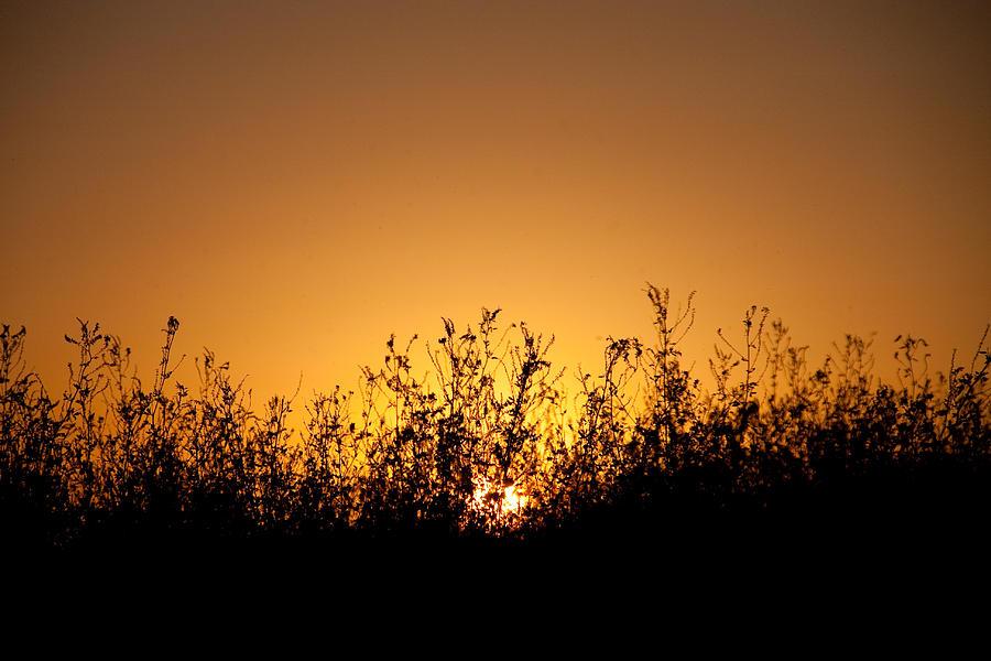 Sunset Photograph - Final Sunset by Bob Mintie