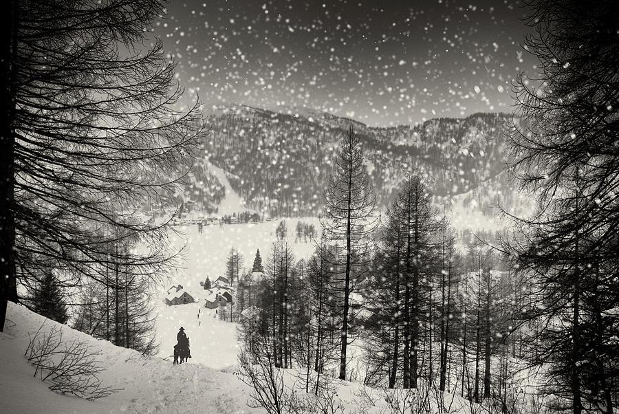 Trapper Photograph - Finally At Home by Vito Guarino