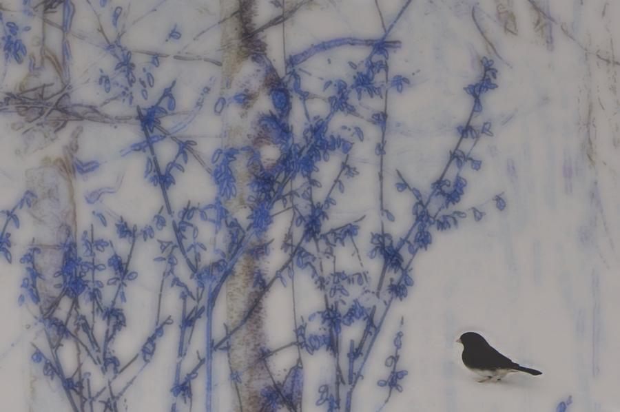 Abstract Photograph - Finding His Way by Barbara S Nickerson