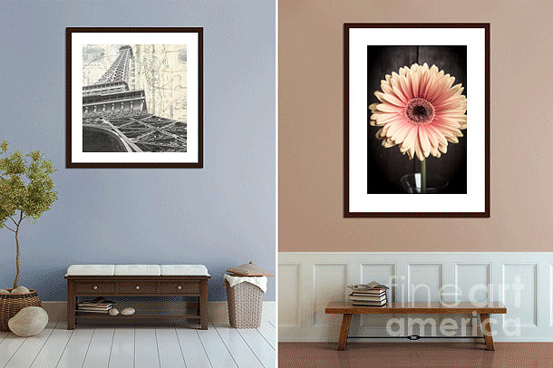 Fine Photograph - Fine Art Photography In The Home by Edward Fielding