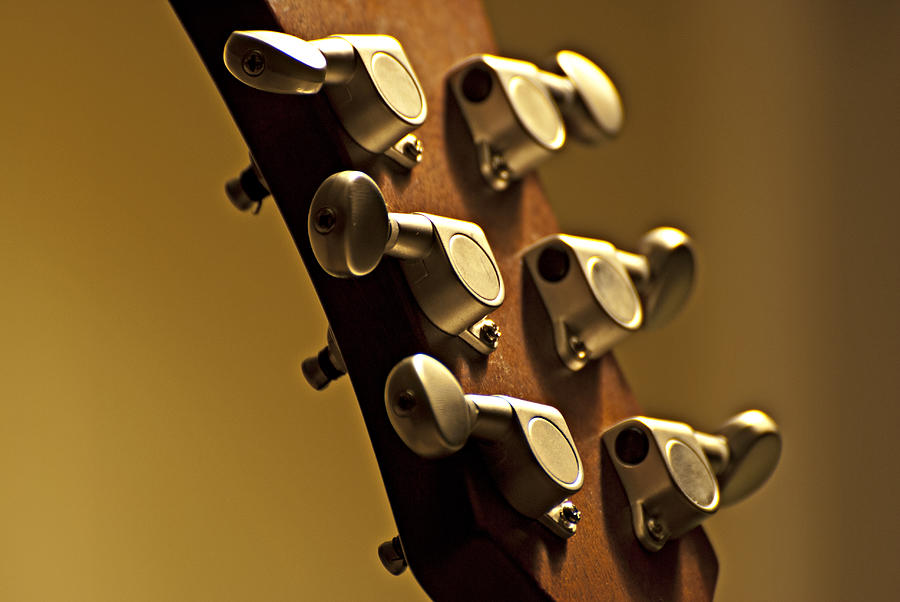 Finely Tuned Photograph - Finely Tuned by Christopher Gaston