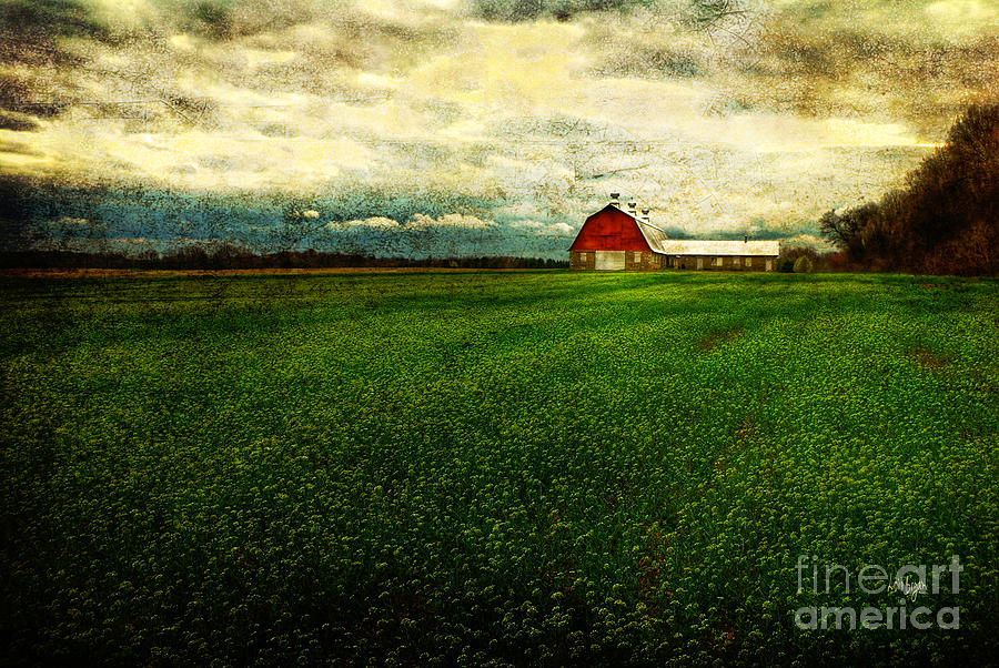 Barn Photograph - Finished by Lois Bryan