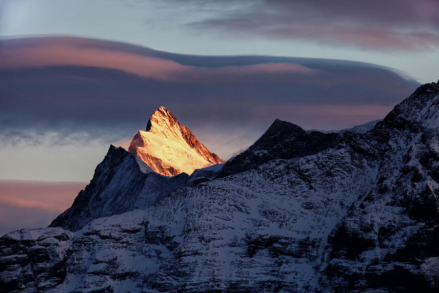 Finsteraarhorn In Swiss Bernese Alps At Photograph by Sa*ga Photography