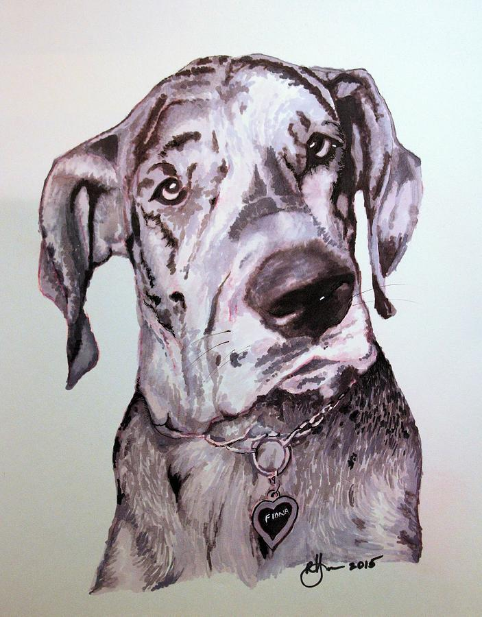 Great Dane Drawing - Fiona by Rachel Hames