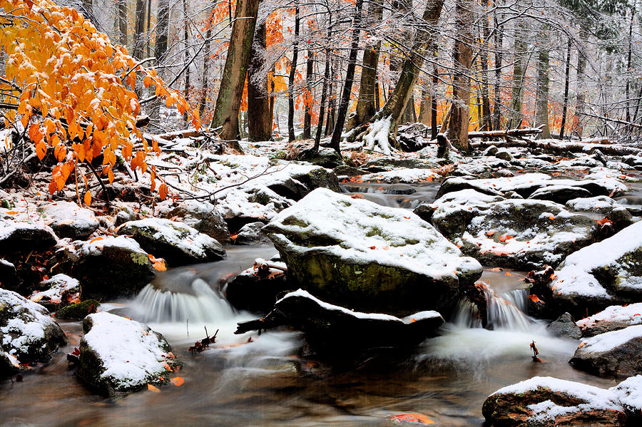 Catoctin Mountain Photograph - Fire And Ice by JC Findley