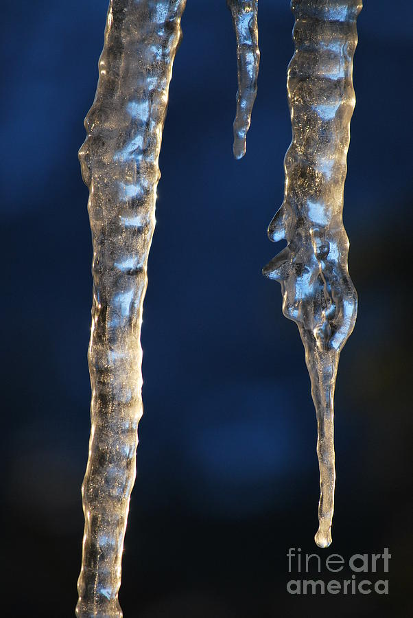 Ice Photograph - Fire And Ice by Kenna Hillman