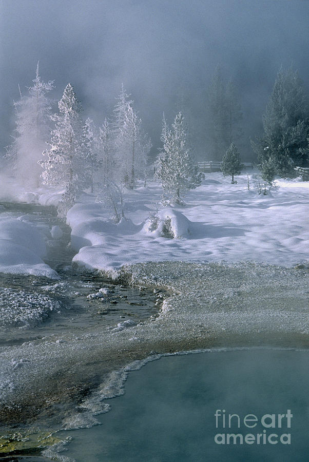 Wyoming Photograph - Fire And Ice - Yellowstone National Park by Sandra Bronstein