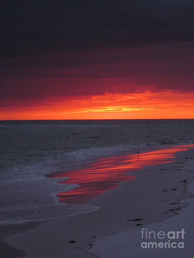 Sunset Photograph - Fire And Water by Elizabeth Carr