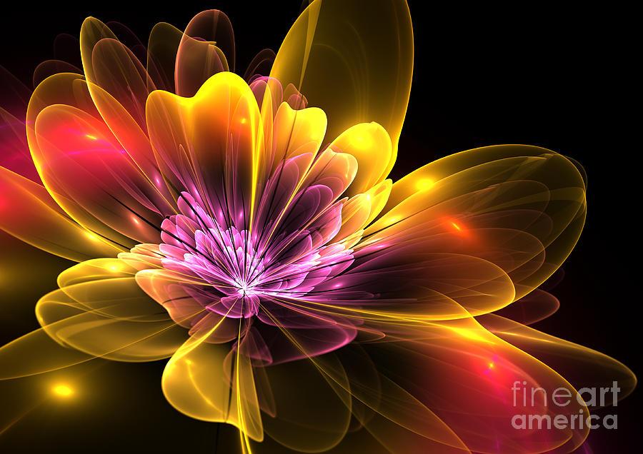 Flower Digital Art - Fire Flower by Svetlana Nikolova