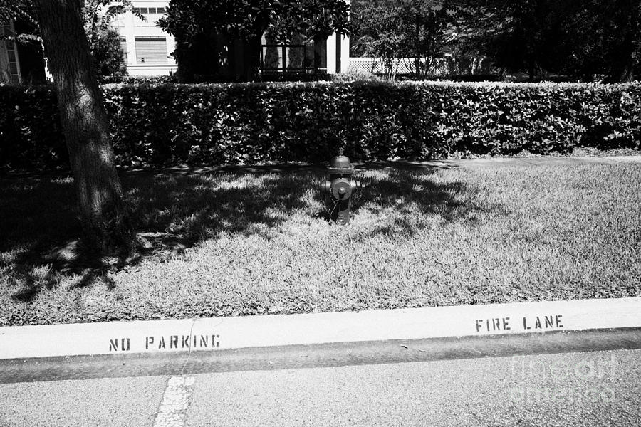 Fire Photograph - Fire Hydrant No Parking Fire Lane Curb In Residential Area Of Celebration Florida Us by Joe Fox