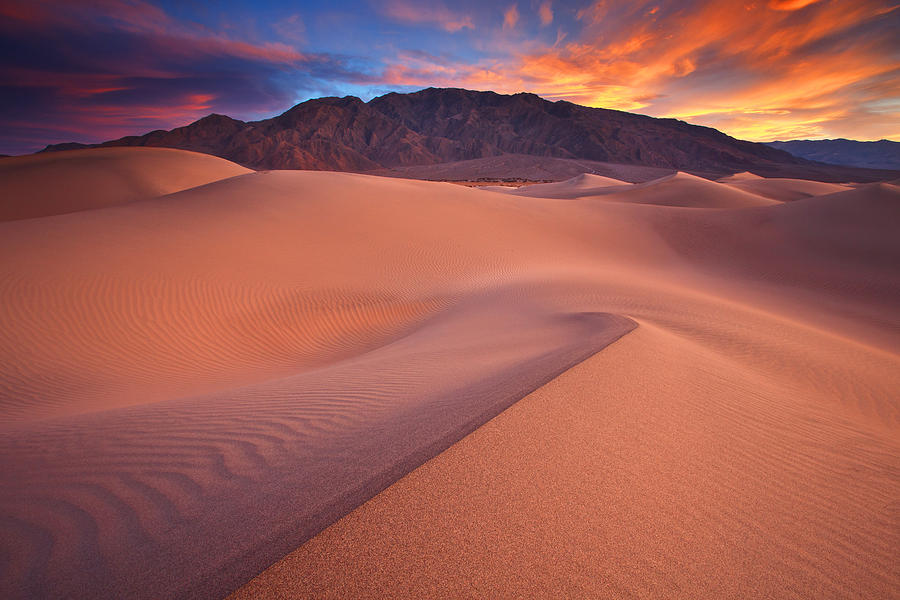 Death Valley Photograph - Fire On Mesquite Dunes by Darren  White