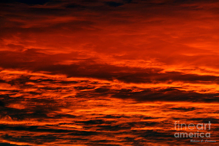 Clouds Photograph - Fire Reds Sunset by Rebecca Christine Cardenas