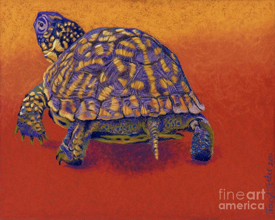 fire walker box turtle drawing by tracy l teeter