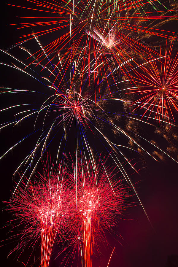4th Of July Photograph - Firework Majesty  by Garry Gay