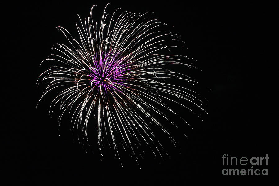 Fireworks are Fleeting by Stan Reckard