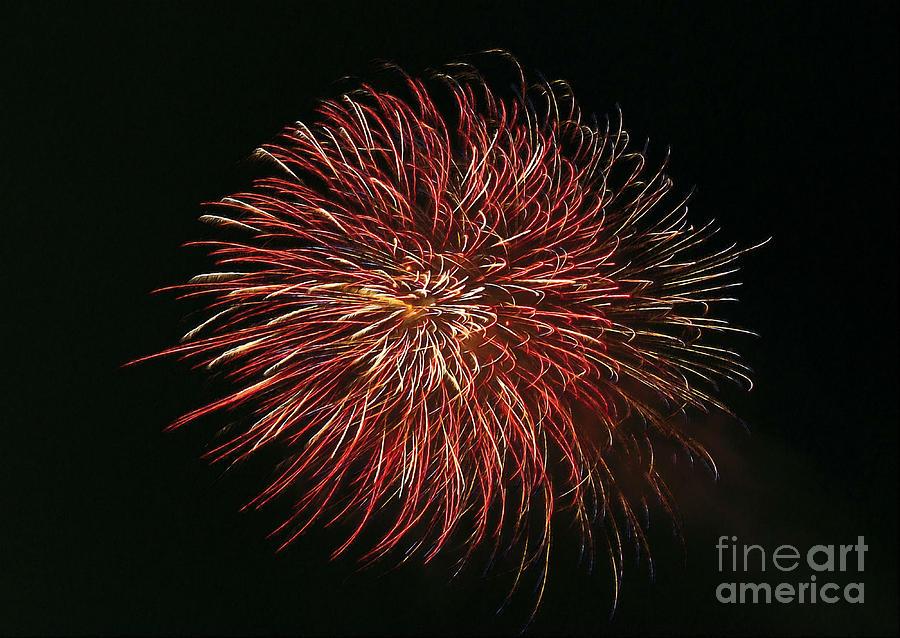 Firework Painting - Fireworks At Night 5 by Jeelan Clark