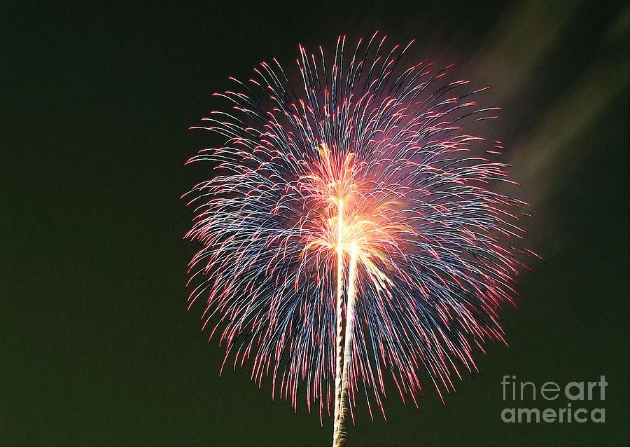 Firework Painting - Fireworks At Night 9 by Jeelan Clark
