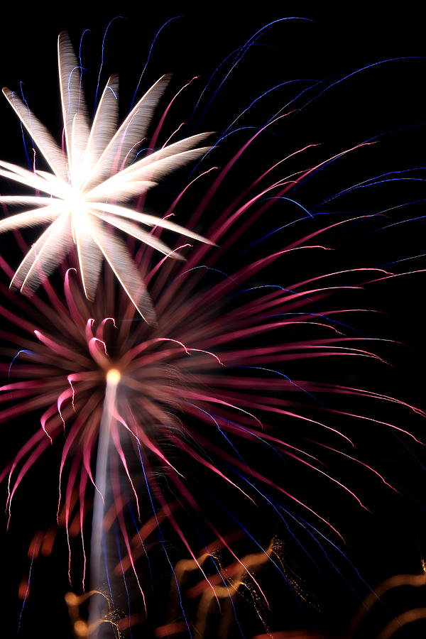 Fireworks Photograph - Fireworks by David Dufresne