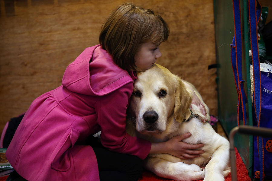 First Day Of Crufts 2015 Photograph by Carl Court