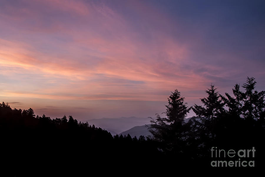 Tennessee Photograph - First Light At Newfound Gap by Ricky Smith