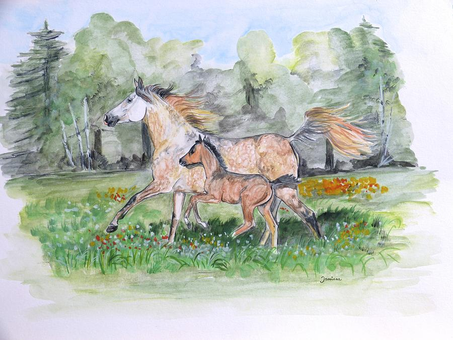 Arabian Horse Painting - First Run by Janina  Suuronen