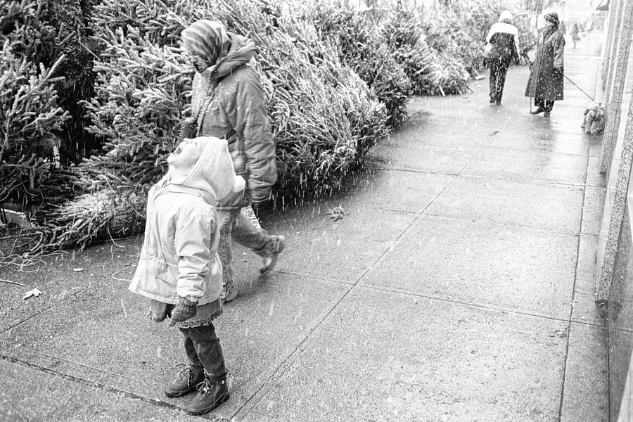 Christmas Photograph - First Snow by Dave Beckerman