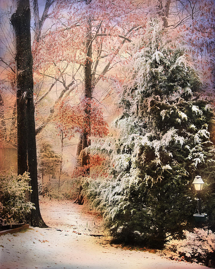 Path Photograph - First Snow by Jai Johnson