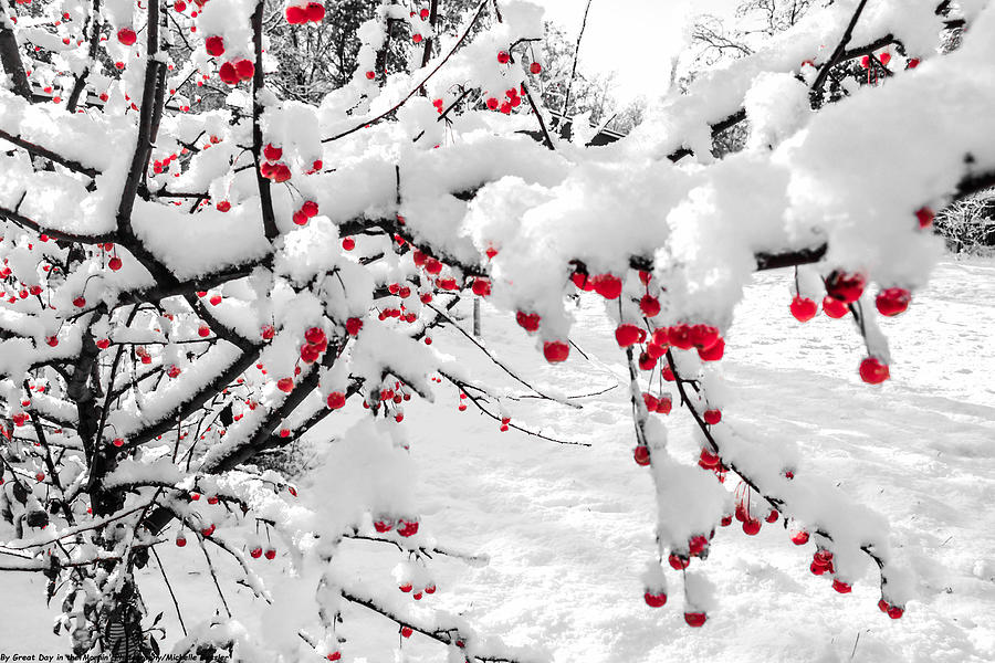 Snow Photograph - First Snow by Michelle and John Ressler