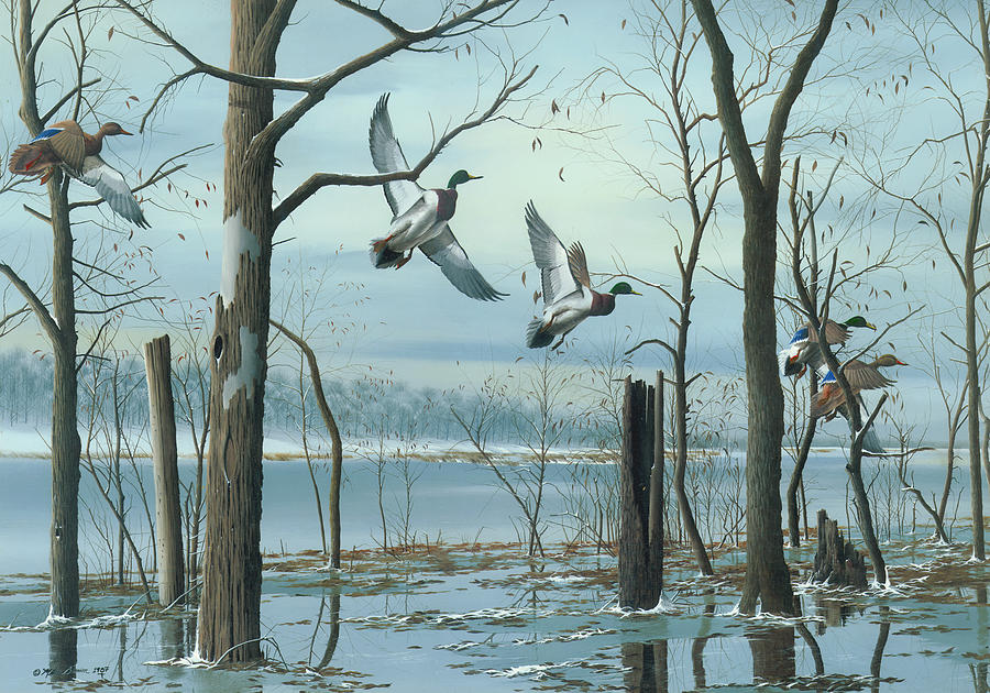 Mallards Painting - First Snow by Mike Brown