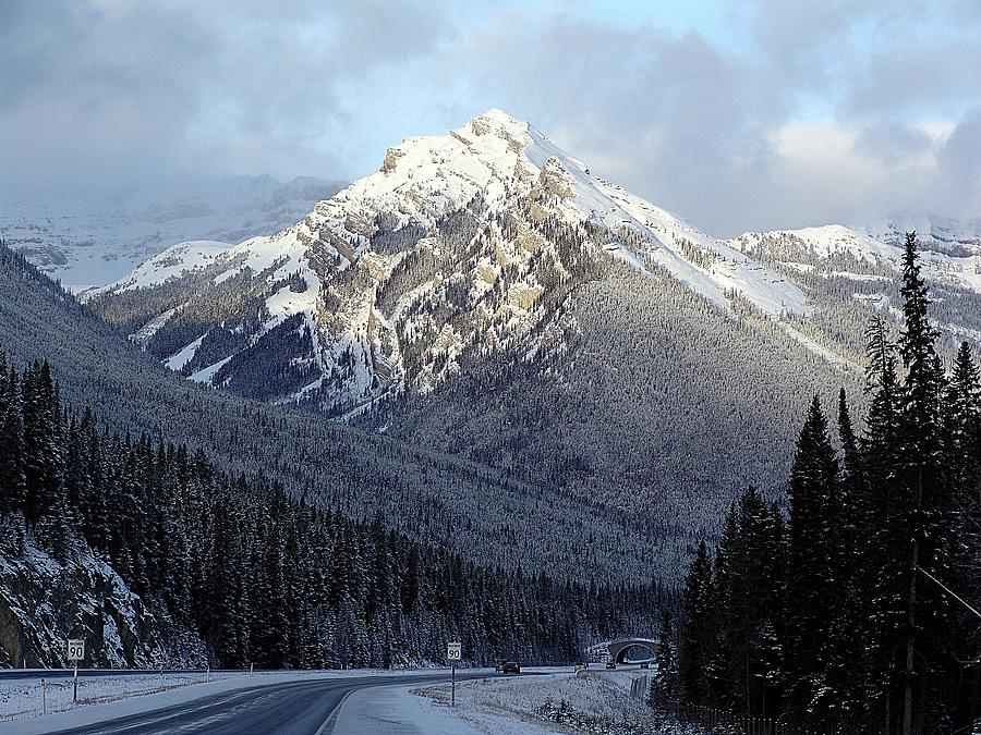 Alberta Photograph - First Snowfall by George Cousins
