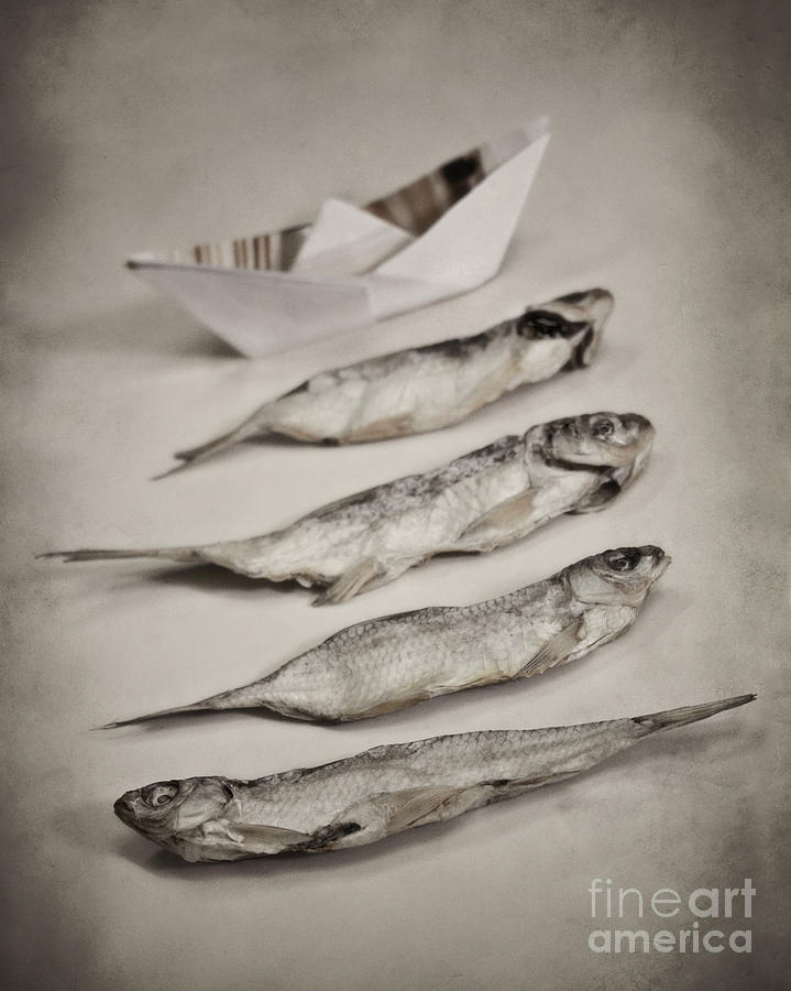 Still Life Photograph - Fish Out Of Water by Diana Kraleva