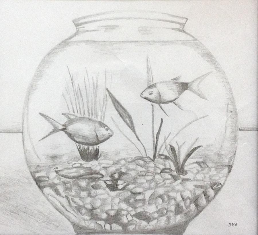 Fish Tank Drawing By Shibin Varghese