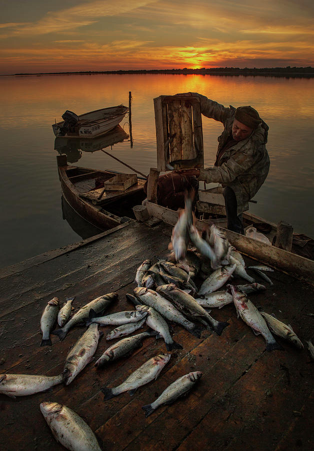 Documentary Photograph - Fisherman by Tuncay Dogruluk