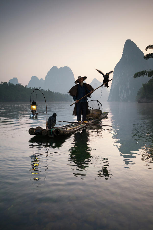Fisherman With Cormorants On Li River Photograph by Matteo Colombo