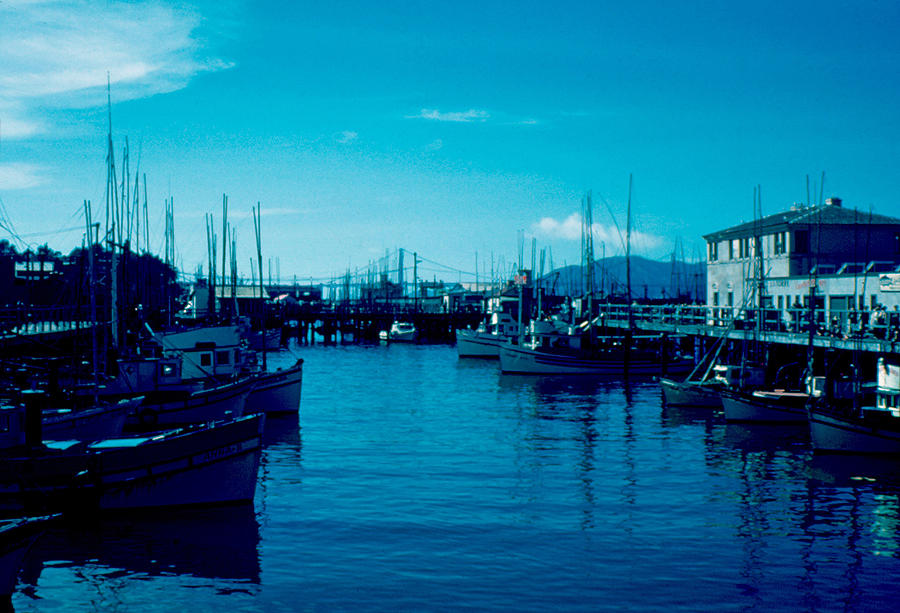 Fisherman's Wharf Photograph - Fishermans Wharf 1955 by Cumberland Warden
