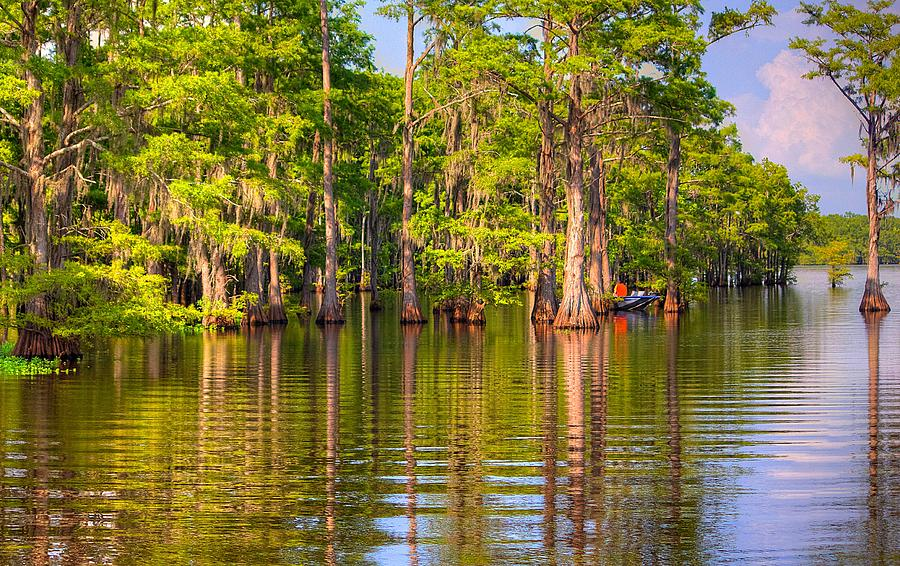 Bayou Photograph - Fishing At The Bayou by Ester McGuire