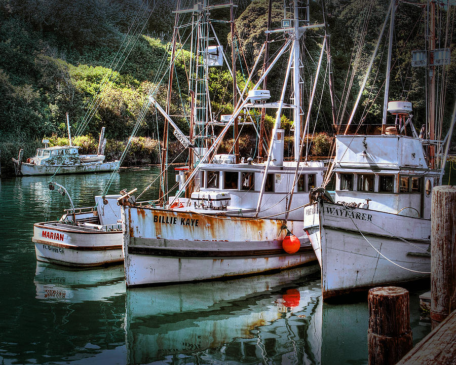 fishing boats in fort bragg photograph by william havle
