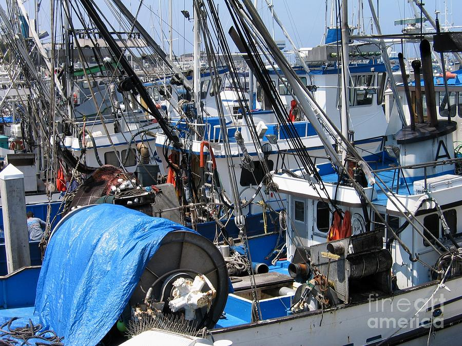 Fishing Boats in Monterey Harbor by James B Toy