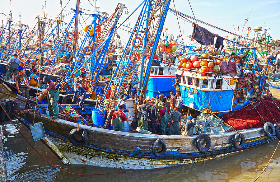 Fishing Boats In The Harbour At Essaouira In Morocco Photograph by Laurence Delderfield