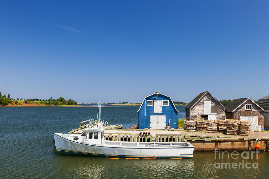 Boat Photograph - Fishing Dock In Prince Edward Island by Elena Elisseeva
