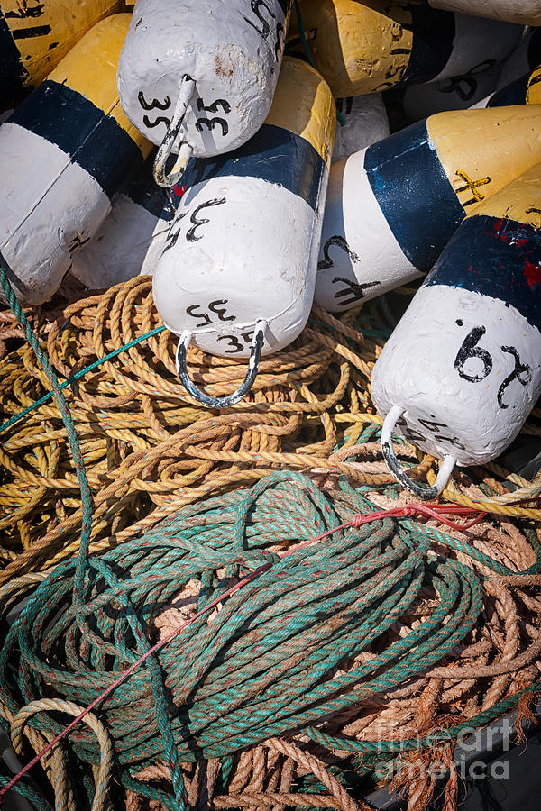 Floats Photograph - Fishing Floats And Rope by Elena Elisseeva