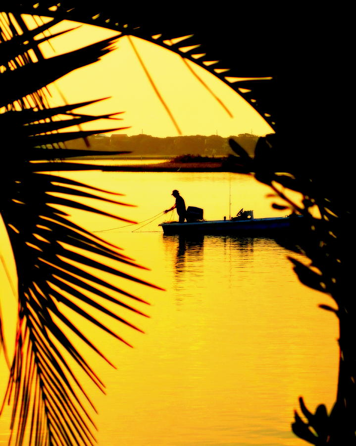 Surf City Photograph - Fishing In Gold by Karen Wiles